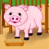 Bebek domuzcuk bakım oyunu