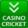 cricket oyunları