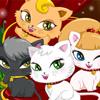Kedi kreş Deluxe oyunu