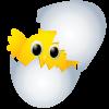 Tavuk kapağı oyunu