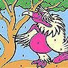 Bayan pembe papağan boyama oyunu