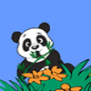 Panda macera oyunu