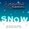 Snow Escape oyunu