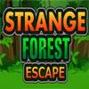 Garip orman kaçış oyunu