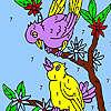 Tatlı komşu kuşlar boyama oyunu