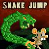 the Snake Jump oyunu
